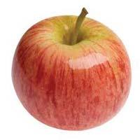 Sadnice voca jabuka Gala