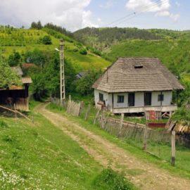 Povratak u sela – izbor ili izlaz?